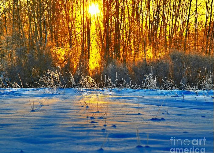 Sunshine Greeting Card featuring the photograph Winters Morning by Robert Pearson