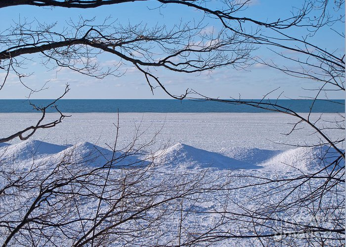 Winter Greeting Card featuring the photograph Wintry Lakeshore by Ann Horn