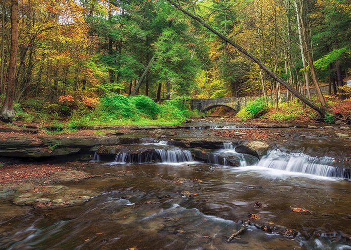 Letchworth Greeting Card featuring the photograph Wolf Creek by Mark Papke