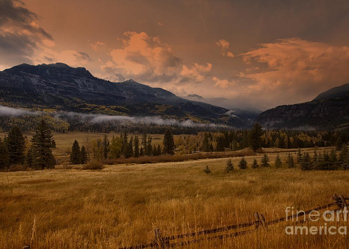 Colorado Greeting Card featuring the photograph Wolf Creek Pass by Timothy Johnson