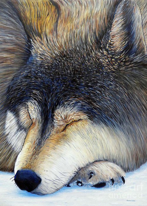 Wolf Greeting Card featuring the painting Wolf Dreams by Brian Commerford