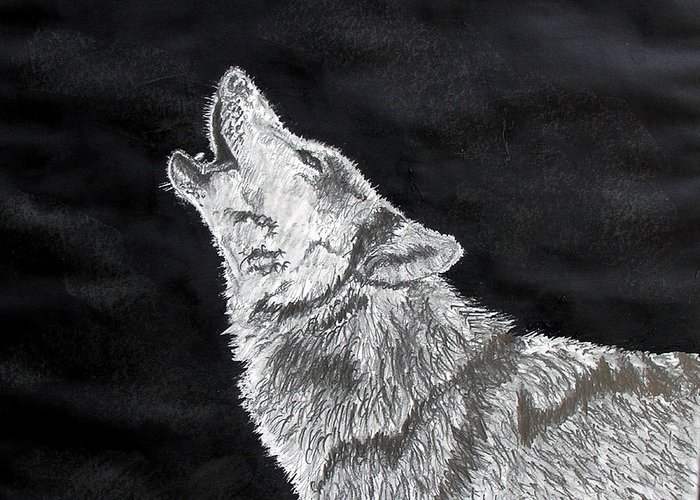 Pencil Greeting Card featuring the drawing Wolf Howl by Stan Hamilton