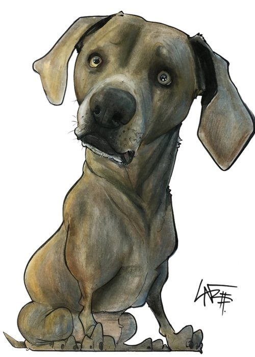 Pet Portrait Greeting Card featuring the drawing Womack 3291 Cooper by John LaFree