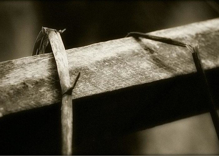 Bnw Greeting Card featuring the photograph Wooden Fence Part 1 by Shelley Smith