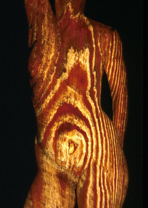 Nature Fusion Greeting Card featuring the photograph Woodgrain by Arla Patch