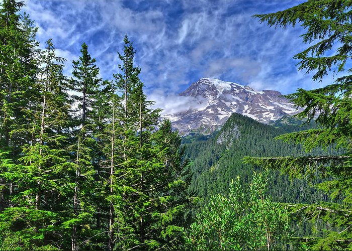 Mt. Rainier National Park Greeting Card featuring the photograph Woods Surrounding Mt. Rainier by Don Mercer