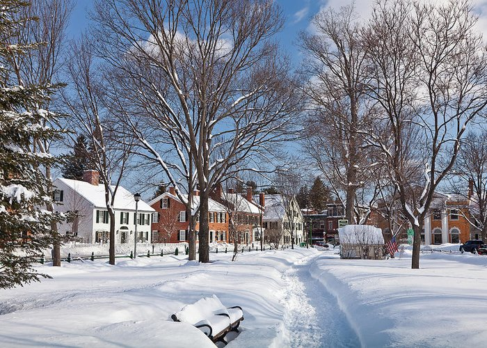 February Greeting Card featuring the photograph Woodstock Green by Susan Cole Kelly