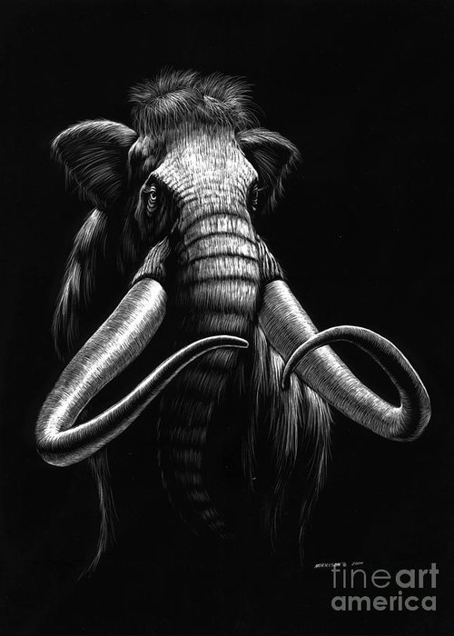 Wildlife Greeting Card featuring the drawing Woolly Mammoth by Stanley Morrison