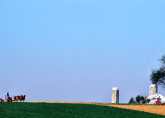 Amish Farmland Greeting Card featuring the photograph Working The Fields by Thomas R Fletcher