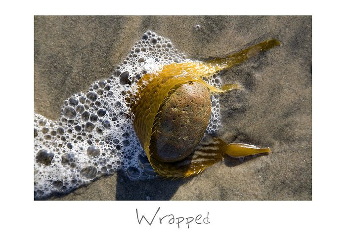 Beach Art Greeting Card featuring the photograph Wrapped by Peter Tellone