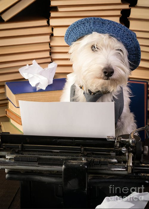 Dog Greeting Card featuring the photograph Writer's Block by Edward Fielding