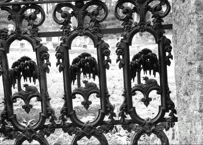 Gate Greeting Card featuring the photograph Wrought Iron Gate -west Epping Nh Usa by Erin Paul Donovan