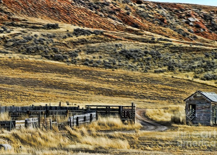 Wyoming Greeting Card featuring the photograph Wyoming X by Chuck Kuhn