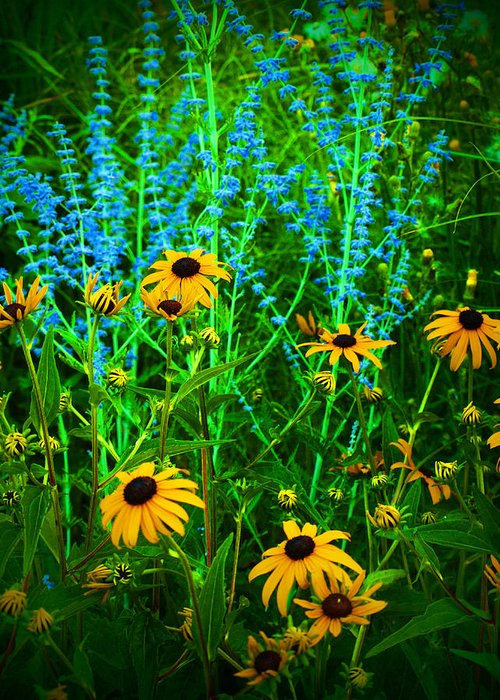 Flowers Greeting Card featuring the photograph Yellow And Blue by Tara Turner