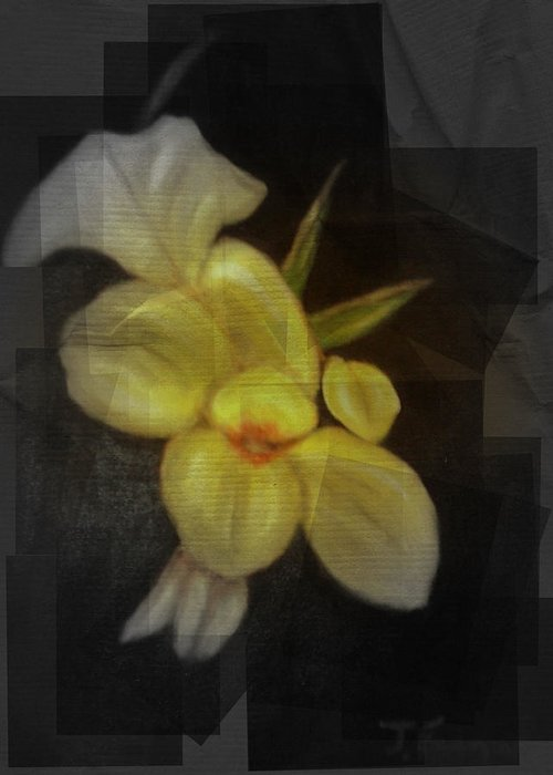Flowers Greeting Card featuring the mixed media Yellow canna lilies by Joseph Ferguson