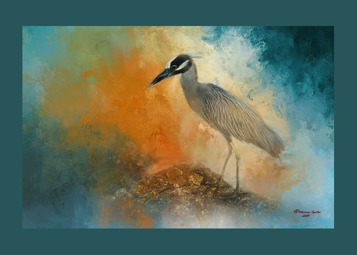 Yellow-crowned Night Heron Greeting Cards