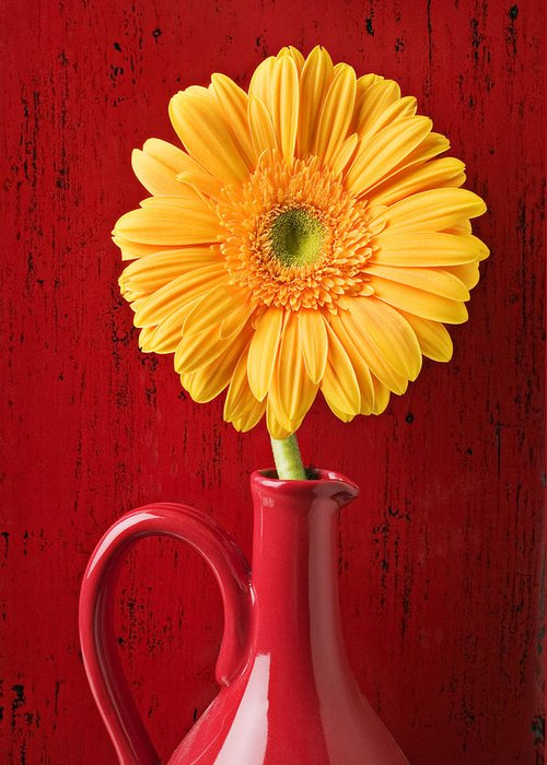 Daisy Greeting Card featuring the photograph Yellow Daisy In Red Vase by Garry Gay