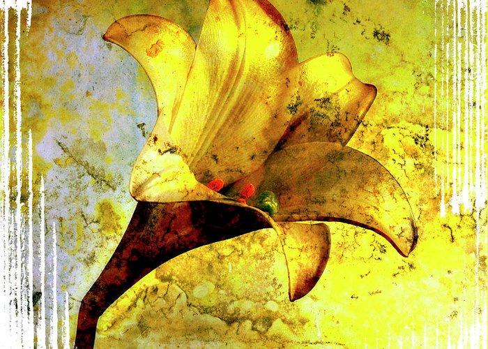 Art Greeting Card featuring the photograph Yellow Lily by Bernard Jaubert