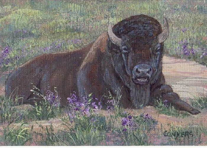 Bison Greeting Card featuring the painting Yellowstone Bison by Peggy Conyers