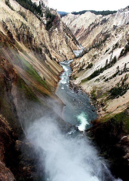 Nature Greeting Card featuring the photograph Yellowstone Fall by Marley Hornewer