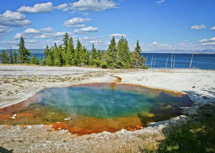 Yellowstone Greeting Card featuring the photograph Yellowstone Prismatic Pool by Brent Parks