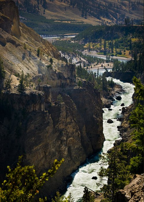 River Greeting Card featuring the photograph Yellowstone River by Chad Davis