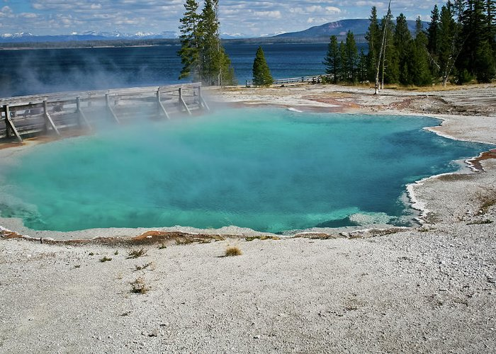 Yellowstone Greeting Card featuring the photograph Yellowstone Water Pool by Brent Parks