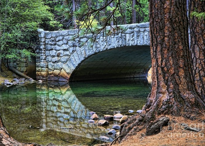 Yosemite Greeting Card featuring the photograph Yosemite Creek by Chuck Kuhn