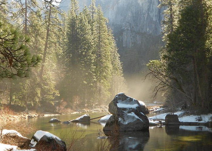Yosemite Spring Greeting Card featuring the photograph Yosemite Spring by FD Graham