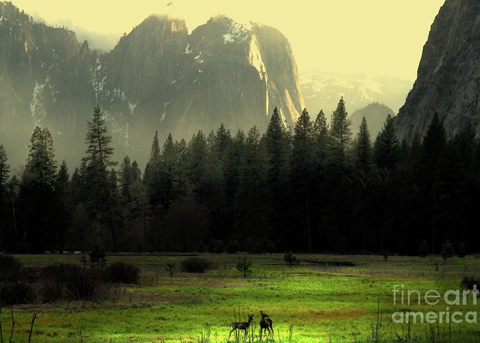 Landscape Greeting Card featuring the photograph Yosemite Village Golden by Wingsdomain Art and Photography