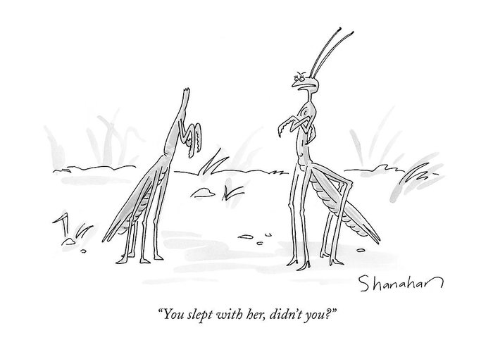 """""""you Slept With Her Greeting Card featuring the drawing You Slept With Her by Danny Shanahan"""
