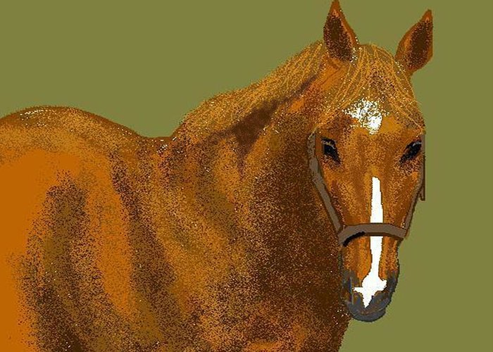 Horse Greeting Card featuring the digital art Young Duke by Carole Boyd