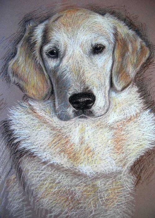 Dog Greeting Card featuring the pastel Young Golden Retriever by Nicole Zeug