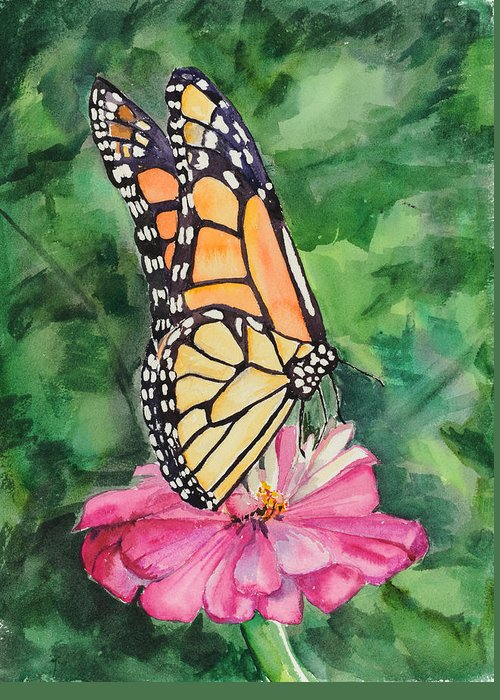 Watercolor. Butterfly Greeting Card featuring the painting Zinnia And Monarch by Judy Loper