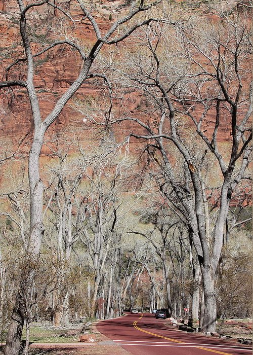 Zion Greeting Card featuring the photograph Zion At Kayenta Trail by Viktor Savchenko