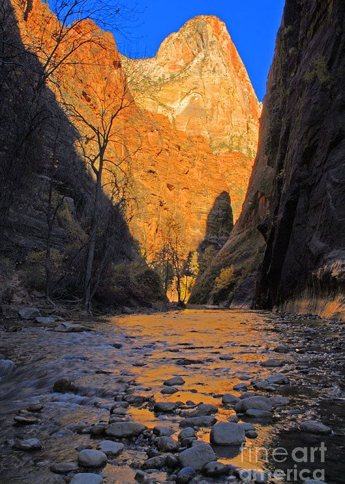 Utah Greeting Card featuring the photograph Zion by Dennis Hammer