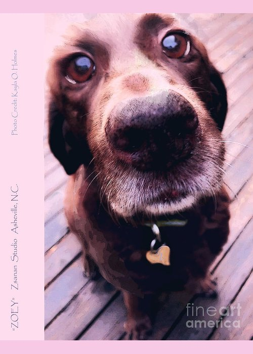 Zoey. Dog Greeting Card featuring the digital art Zoey by Zsanan Studio