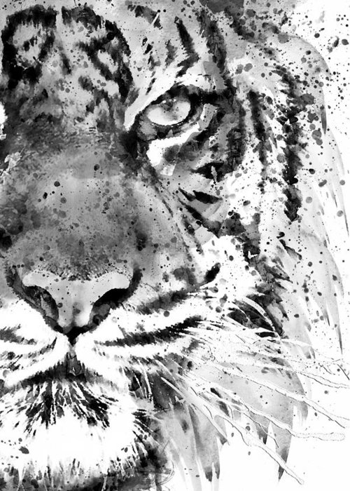 Tiger Greeting Card featuring the painting Black And White Half Faced Tiger by Marian Voicu