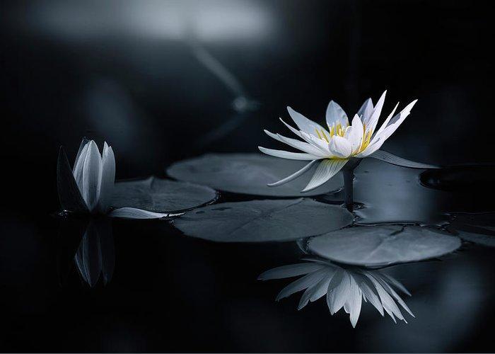 Zen Greeting Card featuring the photograph Reflection by Takashi Suzuki