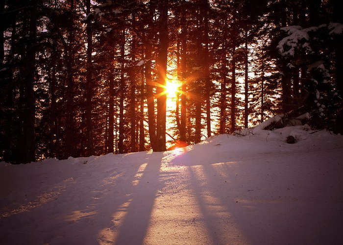 Scenics Greeting Card featuring the photograph Winter Sunset by Borchee