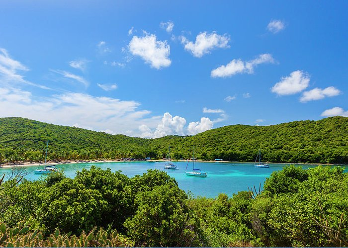 Sailboat Greeting Card featuring the photograph Salt Whistle Bay, Mayreau by Argalis