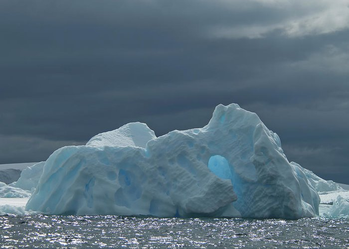 Iceberg Greeting Card featuring the photograph Iceberg Along The Antarctic Peninsula by Mint Images - David Schultz