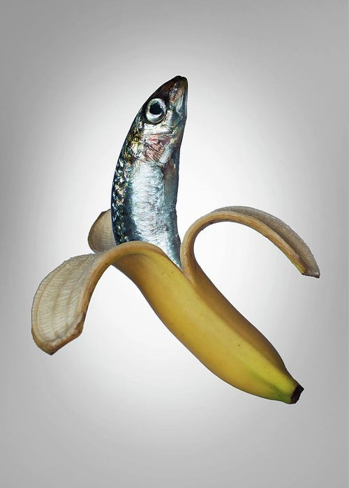 Confusion Greeting Card featuring the photograph A Fish In A Banana by Buena Vista Images
