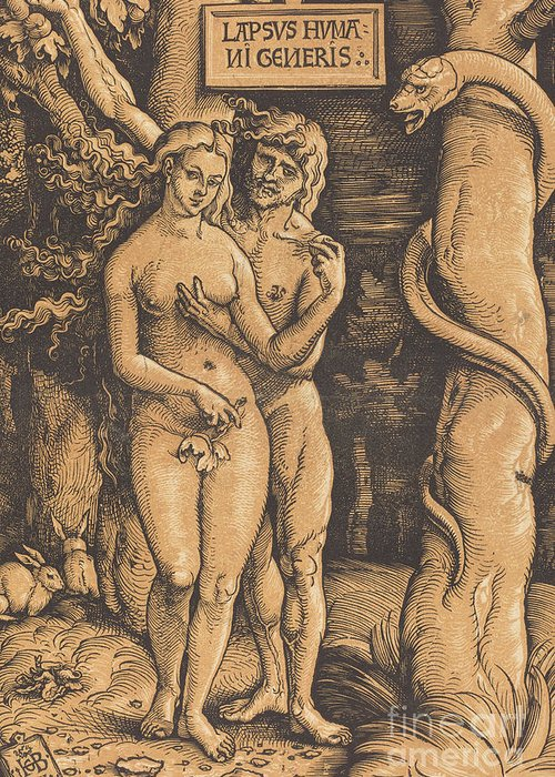 Print Greeting Card featuring the drawing Adam And Eve, 1511 Woodcut by Hans Baldung Grien