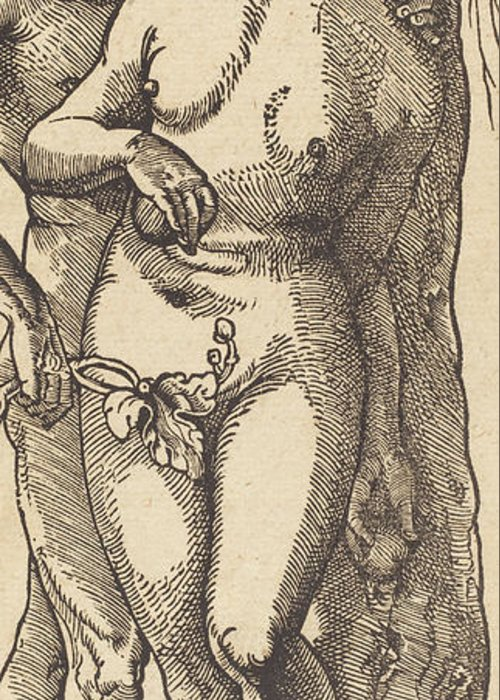 Print Greeting Card featuring the drawing Adam And Eve, 1519 By Grien by Hans Baldung Grien