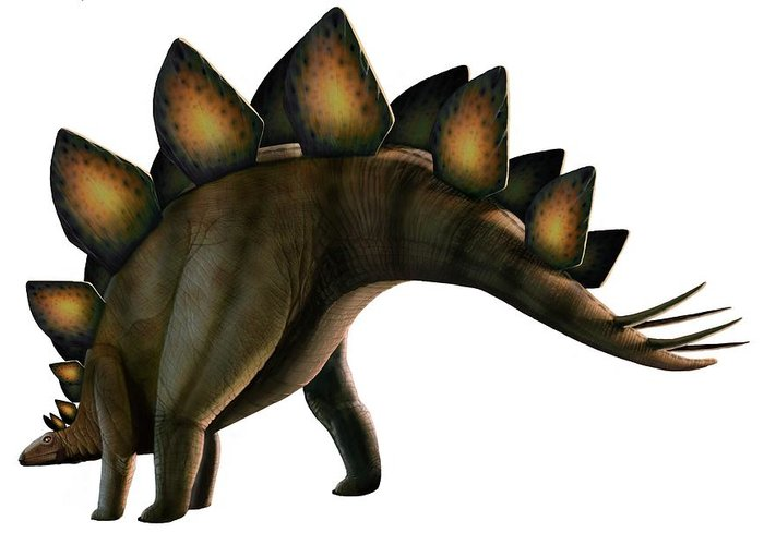 Jurassic Greeting Card featuring the digital art Artwork Of A Stegosaurus Dinosaur by Mark Garlick