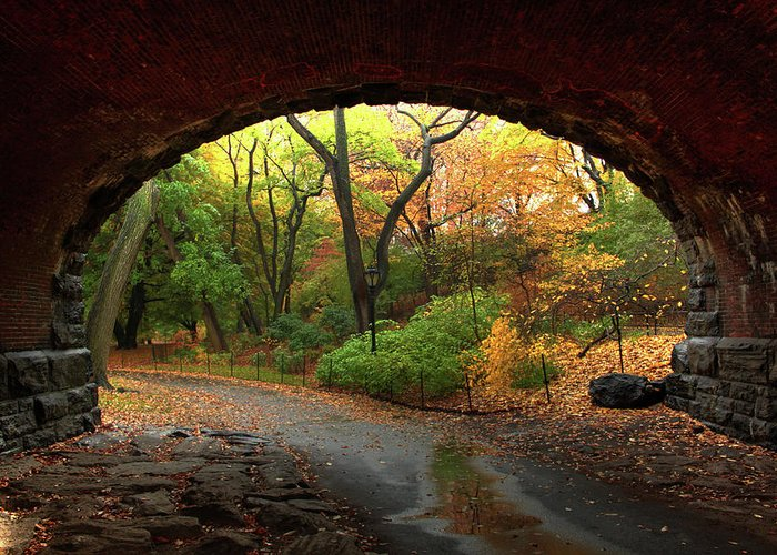 Arch Greeting Card featuring the photograph Autumn Fall In Central Park by Ahmad Abdul-karim Photography