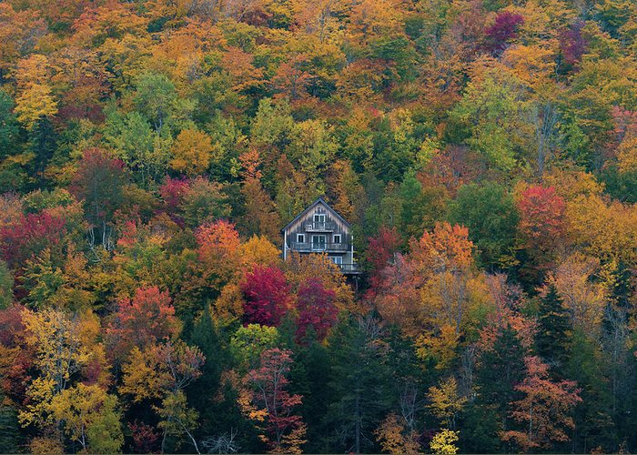 Maine Greeting Card featuring the photograph Autumn In Maine by Jesse MacDonald