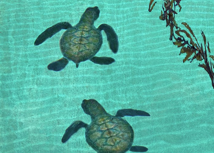 Seaweed Greeting Card featuring the photograph Baby Sea Turtles by Melinda Moore