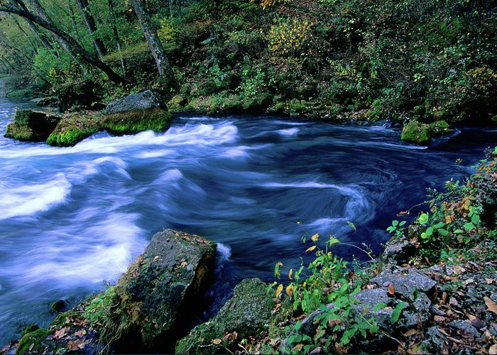 Scenics Greeting Card featuring the photograph Big Spring, Ozarks National Scenic by John Elk Iii